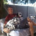 Dan Volcko, Real Estate Agent in Phoenix