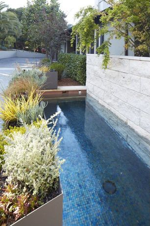 Swimming Pool with Raised beds, Fence