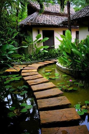 Tropical Landscape/Yard with Pond, Pathway, Raised beds, exterior stone floors