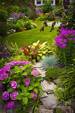 Traditional Landscape/Yard with Endless Summer Hydrangea, Rock landscaping, Stone pavers, exterior stone floors, Natural rock
