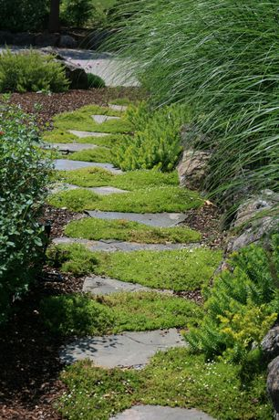 Traditional Landscape/Yard with Pathway, exterior stone floors