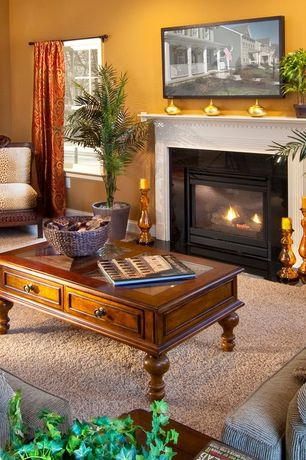 Traditional Living Room with Standard height, Carpet, metal fireplace, double-hung window, Fireplace