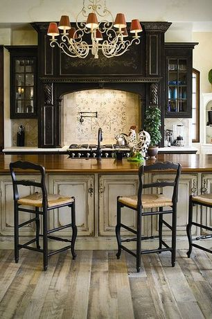 Country Kitchen with One-wall, mexican tile backsplash, Limestone counters, Flat panel cabinets, Glass panel, specialty door