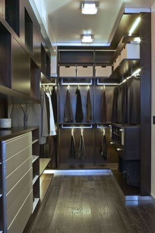Modern Closet with Built-in bookshelf, Standard height, flush light, Hardwood floors