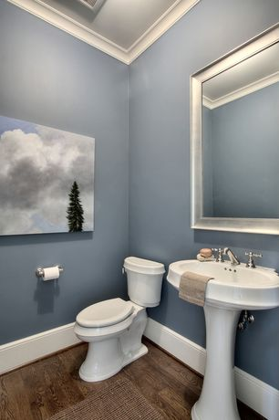 Traditional Powder Room with Hardwood floors, Crown molding, Pedestal sink, Grooved silver framed wall mirror, Paint
