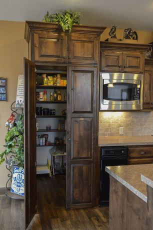 Craftsman Pantry with can lights, Paint, Standard height, interior brick