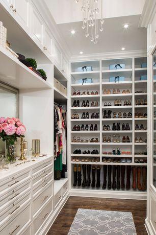Traditional Closet with Built-in bookshelf, Hardwood flooring, Custom walk-in closet, Fancy trellis gray rug, Hardwood floors