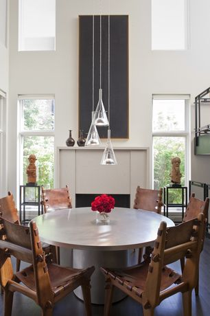 Modern Dining Room with Cathedral ceiling, other fireplace, double-hung window, Fireplace, Laminate floors, Pendant light