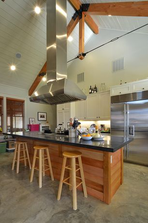 Modern Kitchen with Cathedral ceiling, Kitchen island, Soapstone counters, Polished concrete floor, Inset cabinets, One-wall