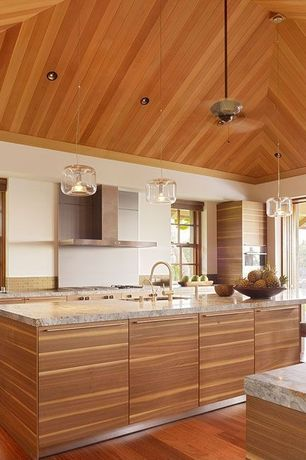 Contemporary Kitchen with electric cooktop, European Cabinets, Stainless Steel, Crown molding, High ceiling, can lights