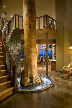 Rustic Staircase with Hardwood floors, High ceiling