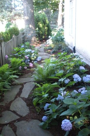 Traditional Landscape/Yard with Natural stone pathway