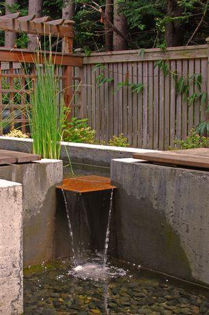 Contemporary Landscape/Yard