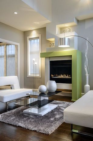 Modern Living Room with Paint 1, Branch bowl, Built-in shelving, 2 tier smoked glass coffee table, Hardwood floors, Paint 2