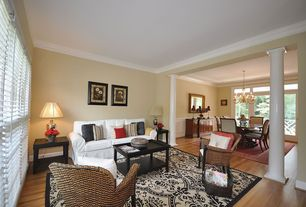 Contemporary Living Room with Standard height, Pier 1 casbah chair - mocha, Columns, Crown molding, Paint 1, Doric columns