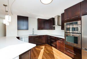 Contemporary Kitchen with Flush, flush light, Undermount sink, Built In Refrigerator, Eglo felice 1 light mini pendant