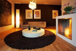 Contemporary Living Room with Paint1, paint2, Safavieh Shag Chocolate Area Rug, Amel Contemporary Storage White Coffee Table