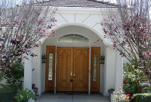 Traditional Front Door with Transom window, exterior stone floors