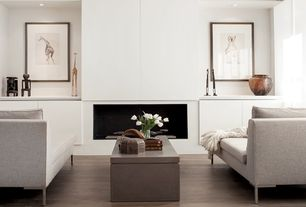 Contemporary Living Room with Symmetrical, Fireplace, Built-in bookshelf, Cement fireplace, can lights, Hardwood floors