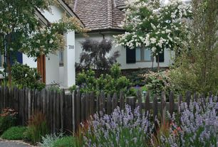 Cottage Landscape/Yard