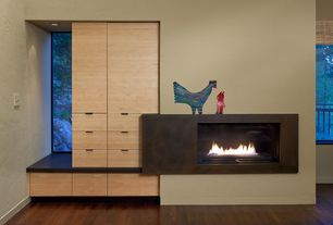 Contemporary Living Room with insert fireplace, can lights, Hardwood floors, Built-in bookshelf, Standard height, Fireplace