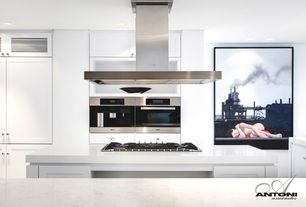Contemporary Kitchen with Island Hood, Framed Partial Panel, Galley, double wall oven, can lights, Kitchen island