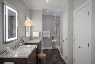 Transitional Master Bathroom with Double sink, specialty door, Hardwood flooring (21 sq. ft. / case), Crown molding, Flush