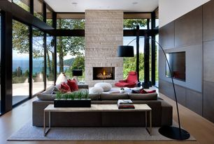 Modern Living Room with Wood panel wall, Glass sliding door, Womb chair and ottoman, Wildon home floor lamp, Fireplace