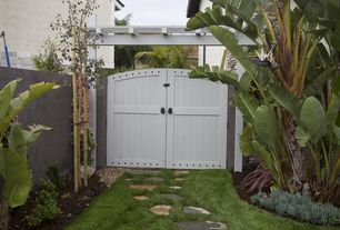 Traditional Landscape/Yard with Cold Hardy Banana Tree