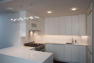 Contemporary Kitchen with Hardwood floors, Pendant light, flush light, Corian counters, U-shaped, European Cabinets, Flush