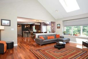Contemporary Living Room with Company C Concentric Squares Multi Area Rug (5'x8'), Hardwood floors, Skylight, Pitched ceiling