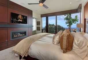 Contemporary Master Bedroom with Ceiling fan, Fireplace, Standard height, insert fireplace, can lights, Hardwood floors