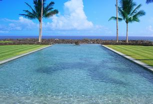 Tropical Swimming Pool with Infinity pool