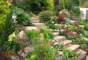 Traditional Landscape/Yard with Exterior stone steps, exterior stone floors, Pathway, Raised beds