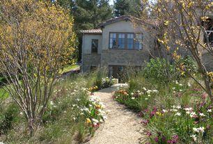 Mediterranean Landscape/Yard
