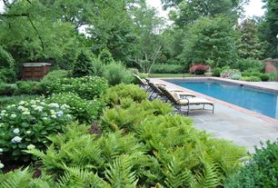 Traditional Swimming Pool with Fence, Pathway, exterior stone floors, Lap pool