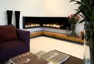 Contemporary Living Room with Napoleon WHVF31 Plasmafire Wall-Mounted Vent-Free Gas Fireplace, Chelsea Home Heather Loveseat