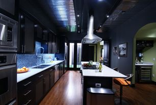 Contemporary Kitchen with European Cabinets, Paint 2, One-wall, Hillsdale venus adjustable height swivel bar stool, Flush