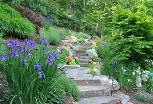 Traditional Landscape/Yard with Natural Flagstone Steps, Raised beds, Woodland garden, Fence, Large St. Francis Statue