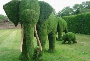 Eclectic Landscape/Yard with Topiary, Outdoor decoration artificial topiary animal for park decoration wire elephant topiary