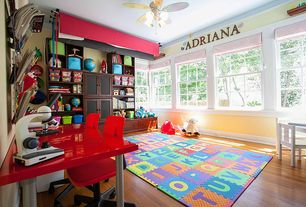 Traditional Playroom with Ceiling fan, Educational Insights MicroPro 48 Piece Microscope Set, Roman shade, Crown molding