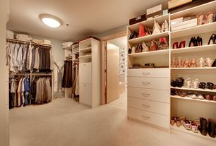 Contemporary Closet with Sea Gull Lighting 59251BLE-962 Brushed Nickel Nexus 4 Light Energy Star Flush Mount Ceiling Fixture