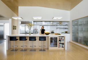Modern Kitchen with Kitchen island, European Cabinets, Stainless steel counters, Powell adjustable height bar stool, Flush