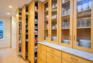 Modern Pantry with Pullout wood tall/pantry accessories, Hardwood floors