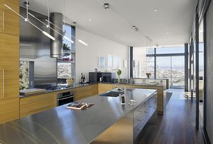 Contemporary Kitchen with Stainless Steel, Undermount sink, Zack de vito architecture, European Cabinets, Pendant light
