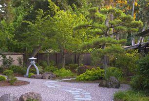 Asian Landscape/Yard with Kotoji granite lantern