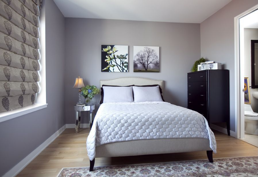 Modern Guest Room : Contemporary Guest Bedroom with Laminate floors by Dawn Hamilton ...