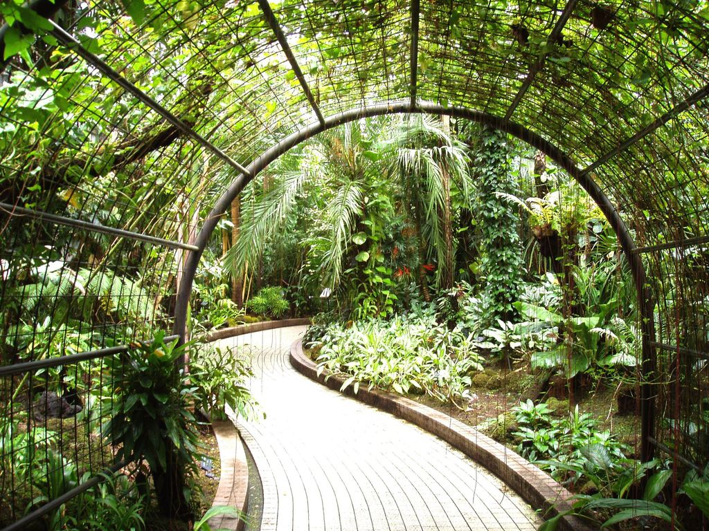 Tropical Landscape/Yard with Brick and tone paved pathway, Trellis arch
