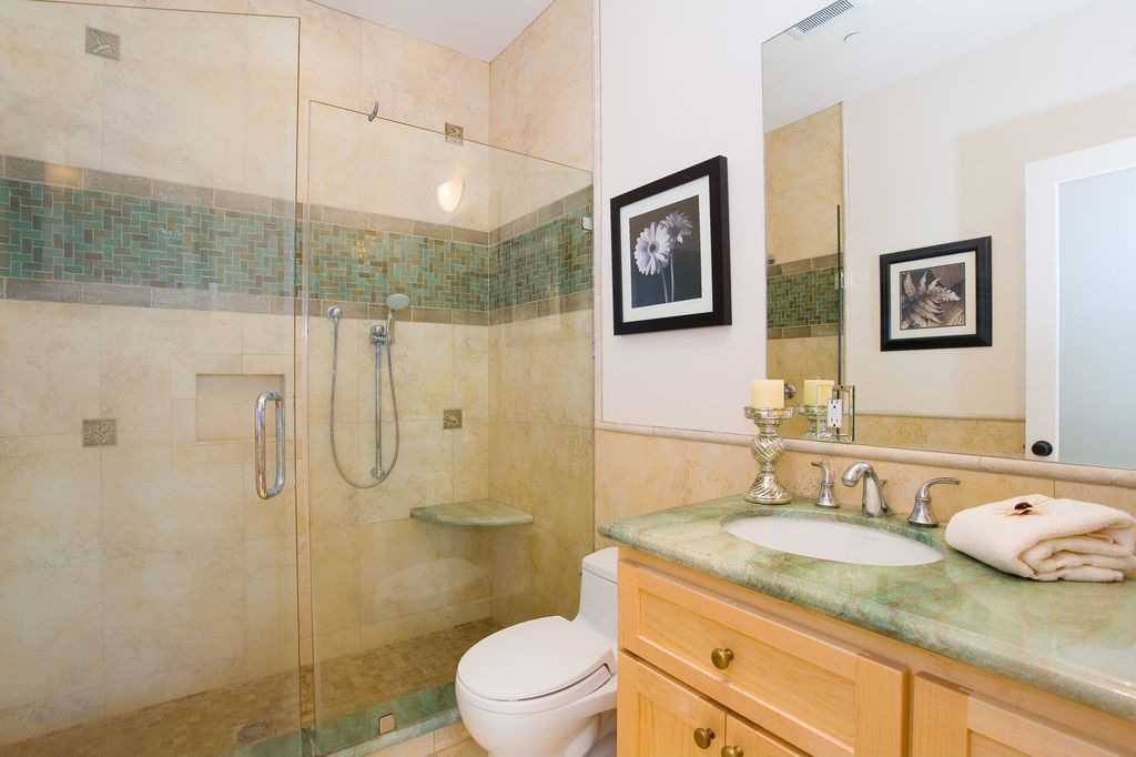 Modern 3/4 Bathroom with French doors, Onyx counters, Framed Partial Panel, Undermount sink, Handheld showerhead, Shower