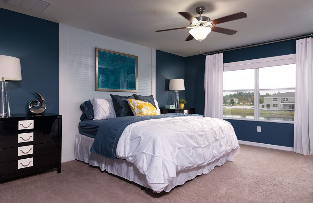 Contemporary Master Bedroom with Ceiling fan, double-hung window, Standard height, Carpet